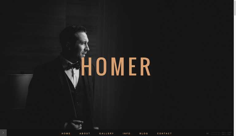 homer_home