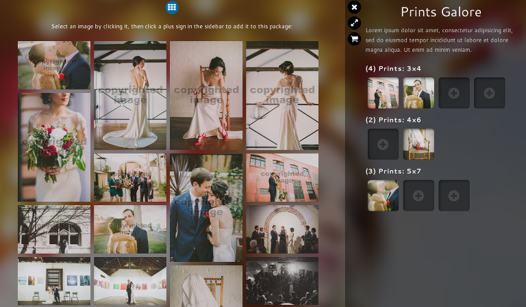 users can browse thumbnails of all gallery images while adding to a package